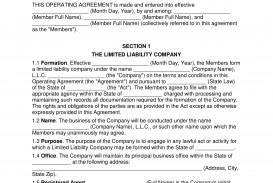 008 Formidable Llc Partnership Agreement Template Photo  Free Operating
