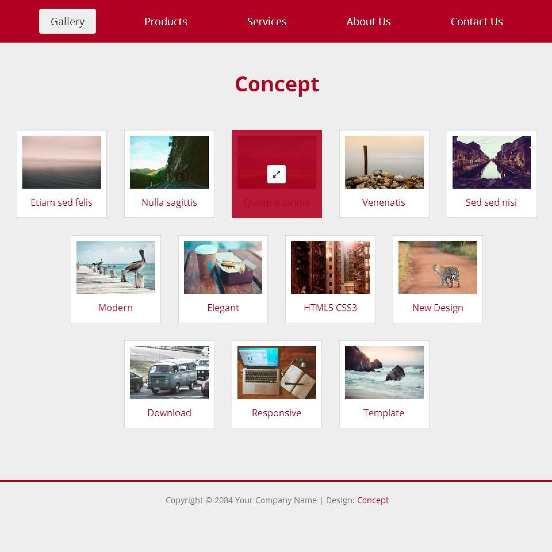 008 Frightening Free Website Template Download Html And Cs For Photo Gallery Example 1920