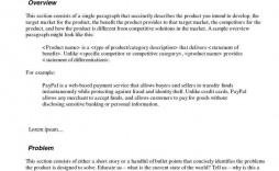 008 Imposing Executive Summary Template Doc Example  Document Google