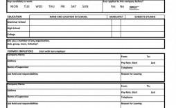 008 Imposing Free Spanish Employment Application Form Design