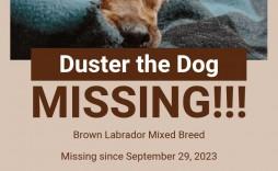 008 Imposing Missing Pet Poster Template Photo  Uk Word