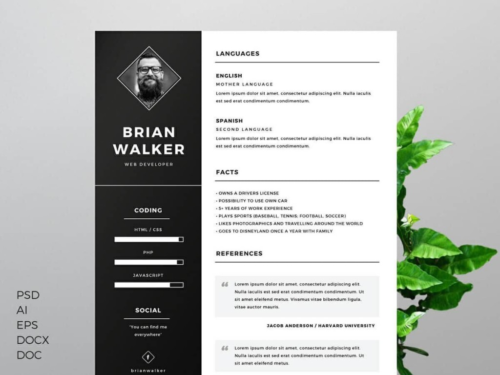 008 Imposing Resume Template Free Word Doc High Definition  Cv Download Document For StudentLarge