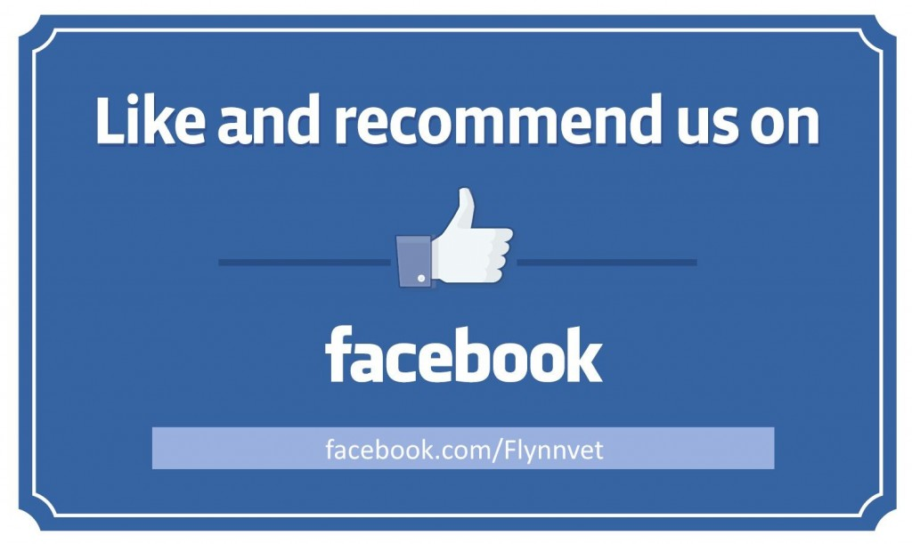 008 Impressive Like U On Facebook Template Design  Free Flyer Email Find PosterLarge