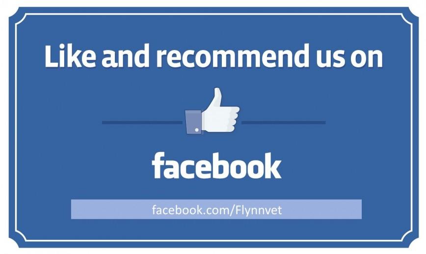 008 Impressive Like U On Facebook Template Design  Free Flyer Find Poster