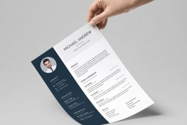 008 Incredible Professional Cv Template Free Online Highest Clarity  Resume