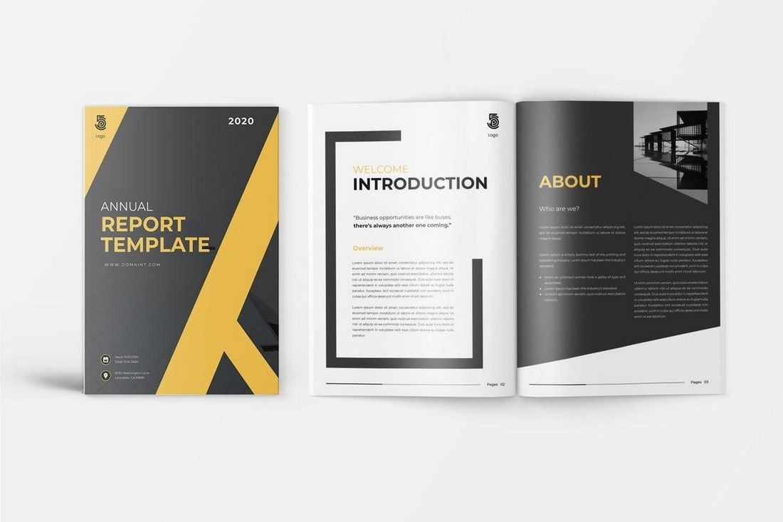 008 Magnificent Annual Report Template Word Example  Performance Rbi Format Ngo In DocFull