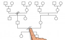 008 Magnificent Family Medical History Genogram Template Example