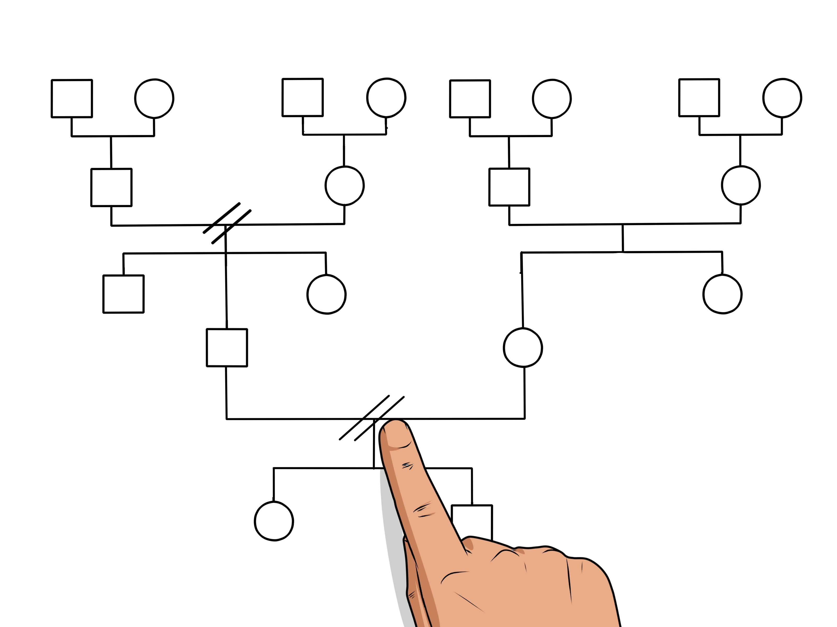 008 Magnificent Family Medical History Genogram Template Example Full