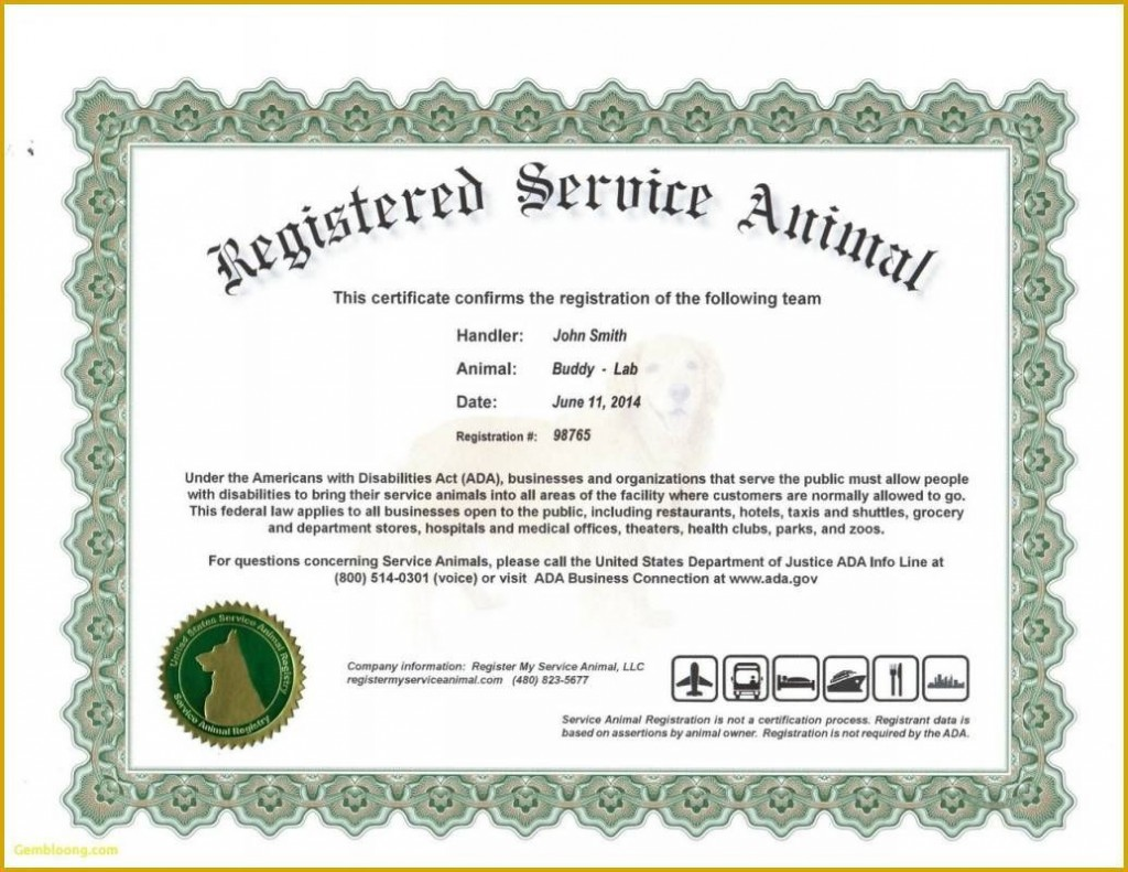 008 Magnificent Service Dog Certificate Template Photo  Printable Id FreeLarge