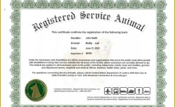 008 Magnificent Service Dog Certificate Template Photo  Printable Id Free