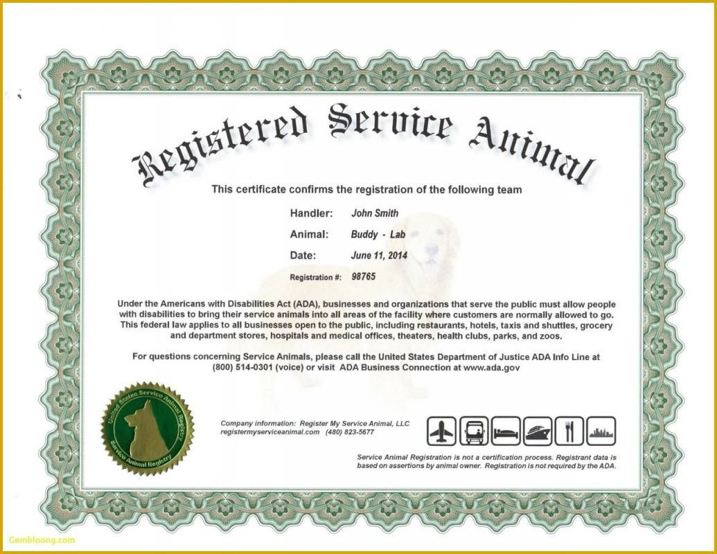008 Magnificent Service Dog Certificate Template Photo  Printable Id FreeFull