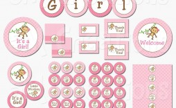 008 Outstanding Baby Shower Printable Girl Photo  Sheet Cake Cute For A