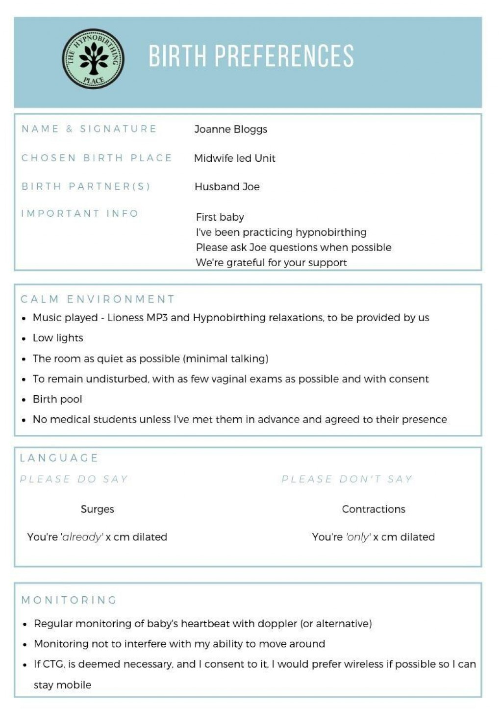 008 Outstanding Natural Birth Plan Template Concept  Childbirth ExampleLarge
