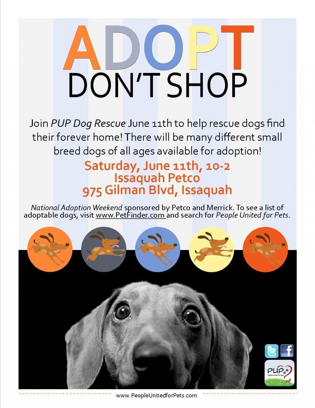 008 Phenomenal Pet Adoption Flyer Template Idea  Free Event DogLarge