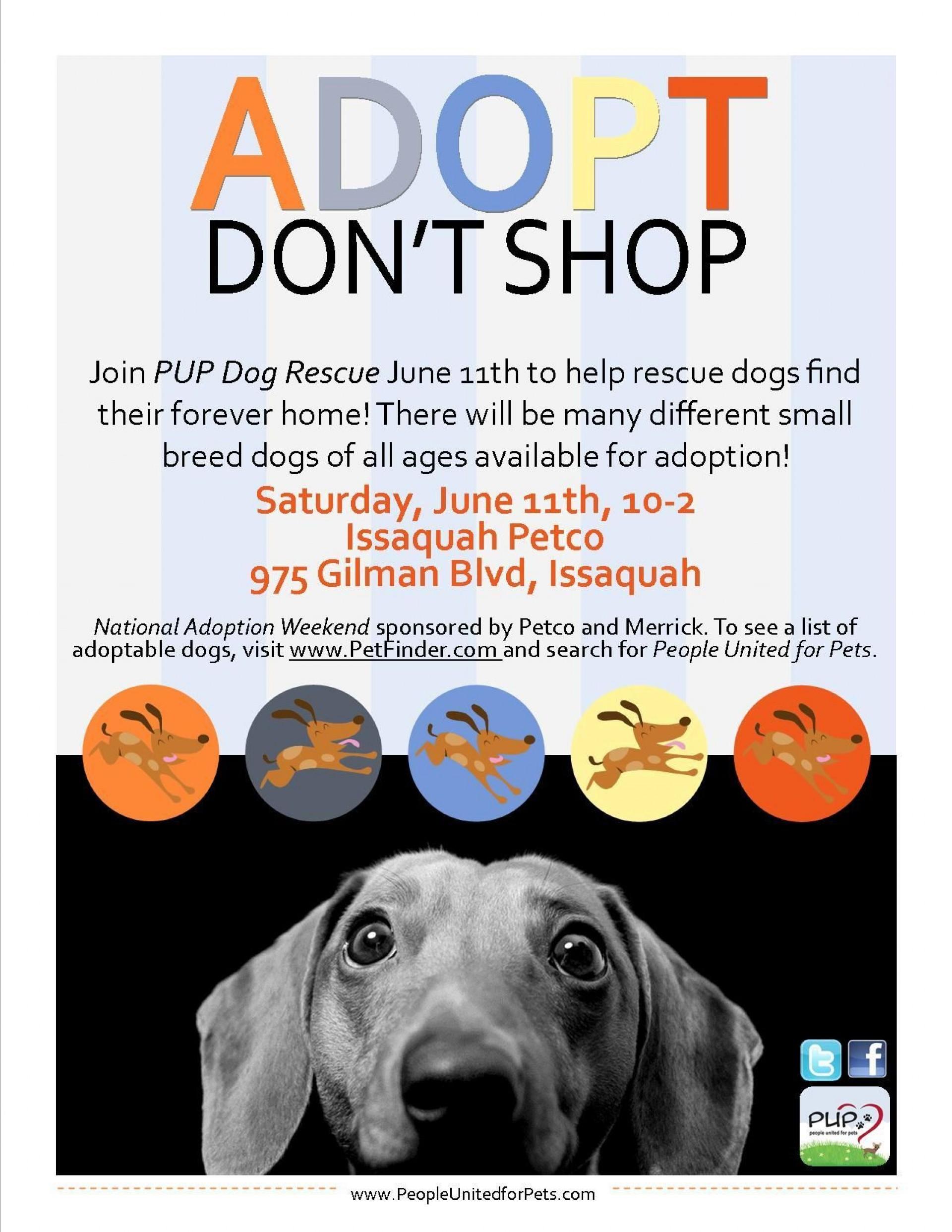 008 Phenomenal Pet Adoption Flyer Template Idea  Free Event Dog1920