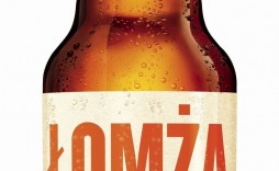 008 Remarkable Beer Label Template Word Highest Quality  Free Bottle Microsoft