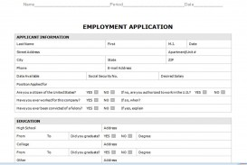 008 Staggering Generic Job Application Template Word Design