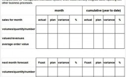 008 Staggering Monthly Sale Report Template High Resolution  Spreadsheet Excel Free Sample Word Format In