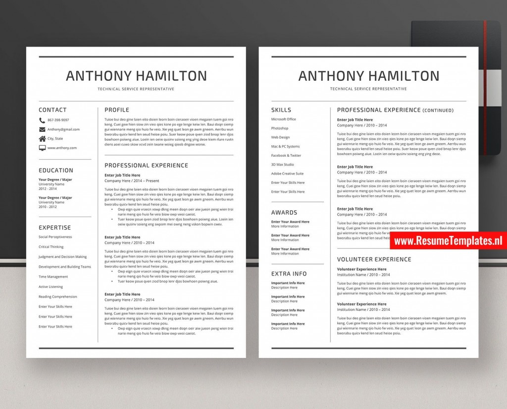 008 Staggering Simple Professional Cv Template Word Example Large