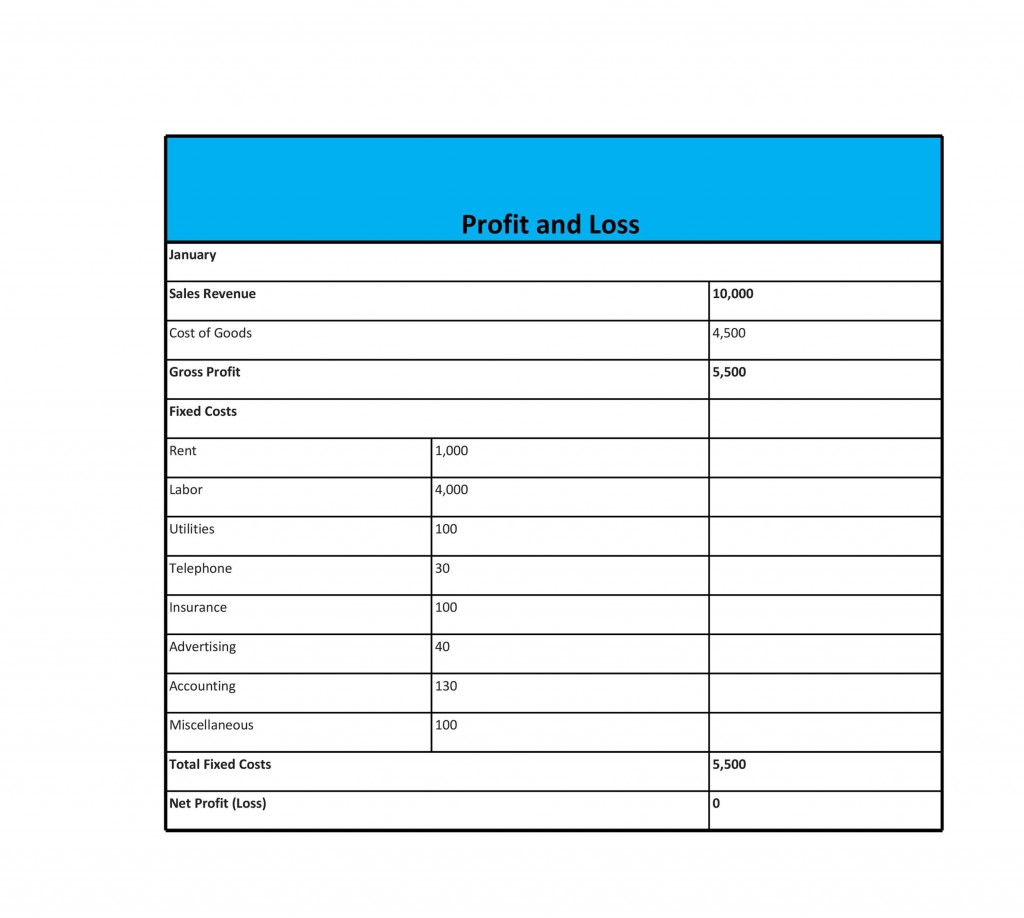 008 Staggering Simple Profit And Los Template High Definition  Free Form Statement For Self EmployedLarge