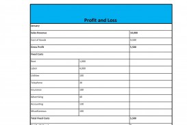 008 Staggering Simple Profit And Los Template High Definition  Free Form Statement For Self Employed