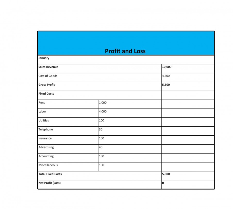 008 Staggering Simple Profit And Los Template High Definition  Free Form Statement For Self Employed960