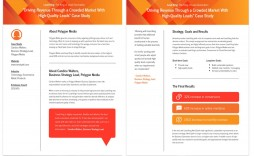 008 Stirring Busines Case Study Template Highest Clarity  One Page Download Ppt