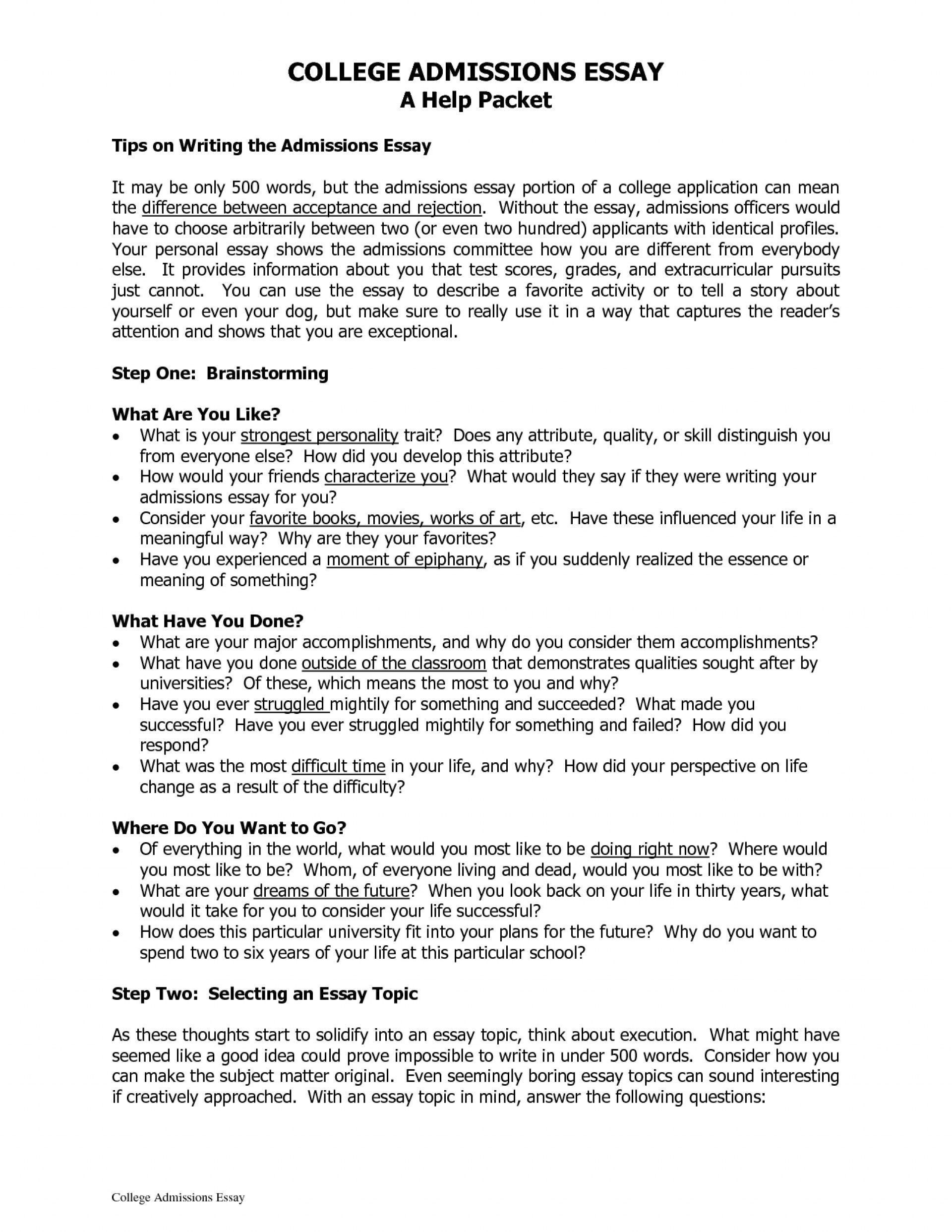 008 Stirring College Application Essay Format Example Photo  Examples Sample Outline1920