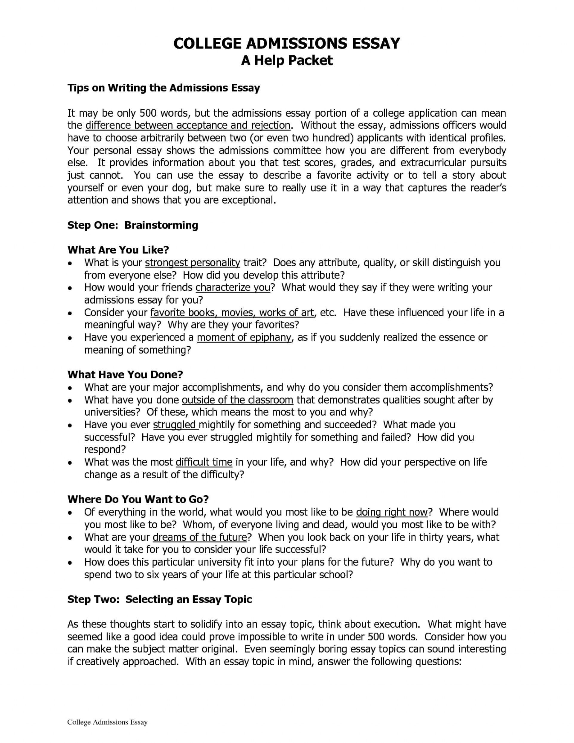 008 Stirring College Application Essay Format Example Photo  Examples Sample OutlineFull