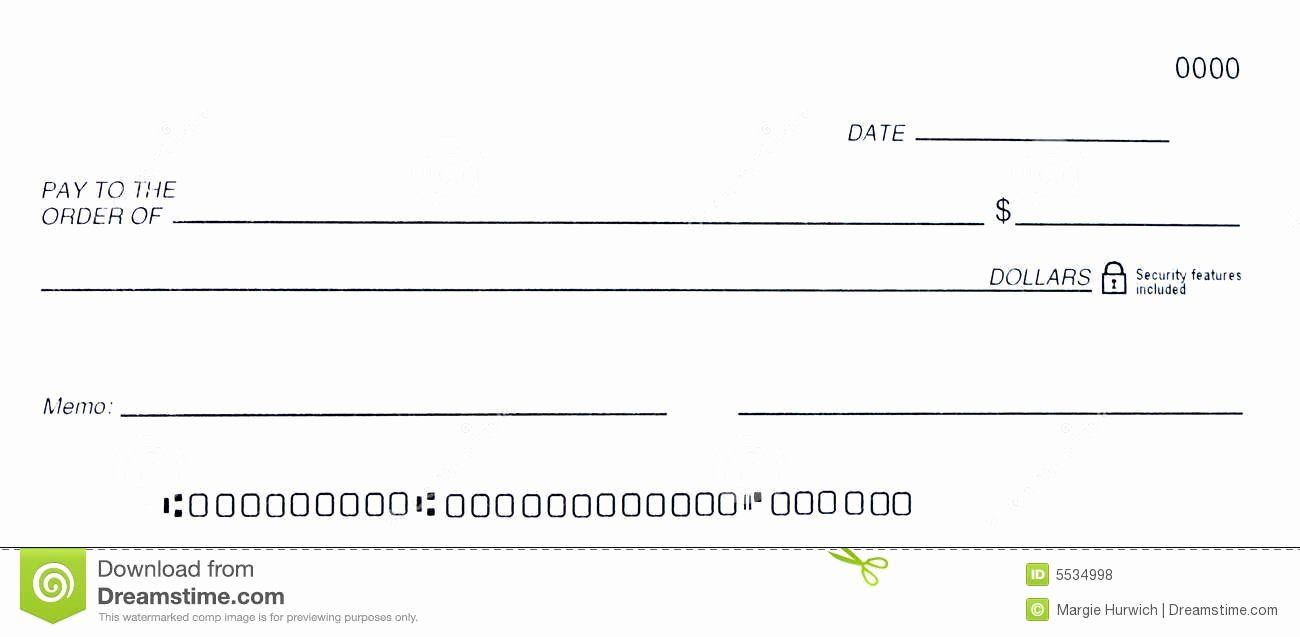 008 Striking Busines Check Template Word Image  Free Blank DocumentFull