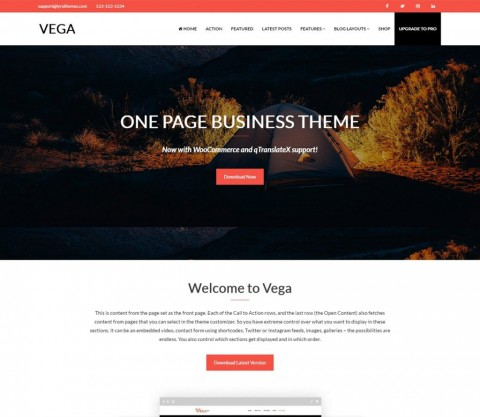 008 Stunning Professional Busines Website Template Free Download Wordpres Highest Quality 480