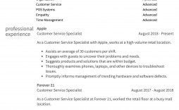 008 Surprising Customer Service Resume Template Highest Quality  Cv