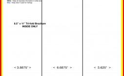008 Top Brochure Template Google Doc High Definition  Layout Blank Tri Fold