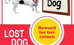 008 Unbelievable Lost Dog Flyer Template Highest Quality  Missing Pet Free Download