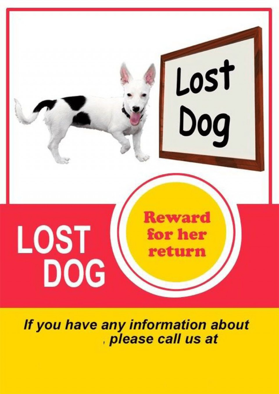 008 Unbelievable Lost Dog Flyer Template Highest Quality  Printable Free Missing Pet960