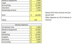 008 Unbelievable Pro Forma Financial Statement Template Inspiration  Format Sample