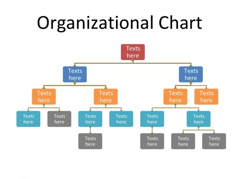 008 Unforgettable M Office Org Chart Template Sample  Microsoft Free Organizational480