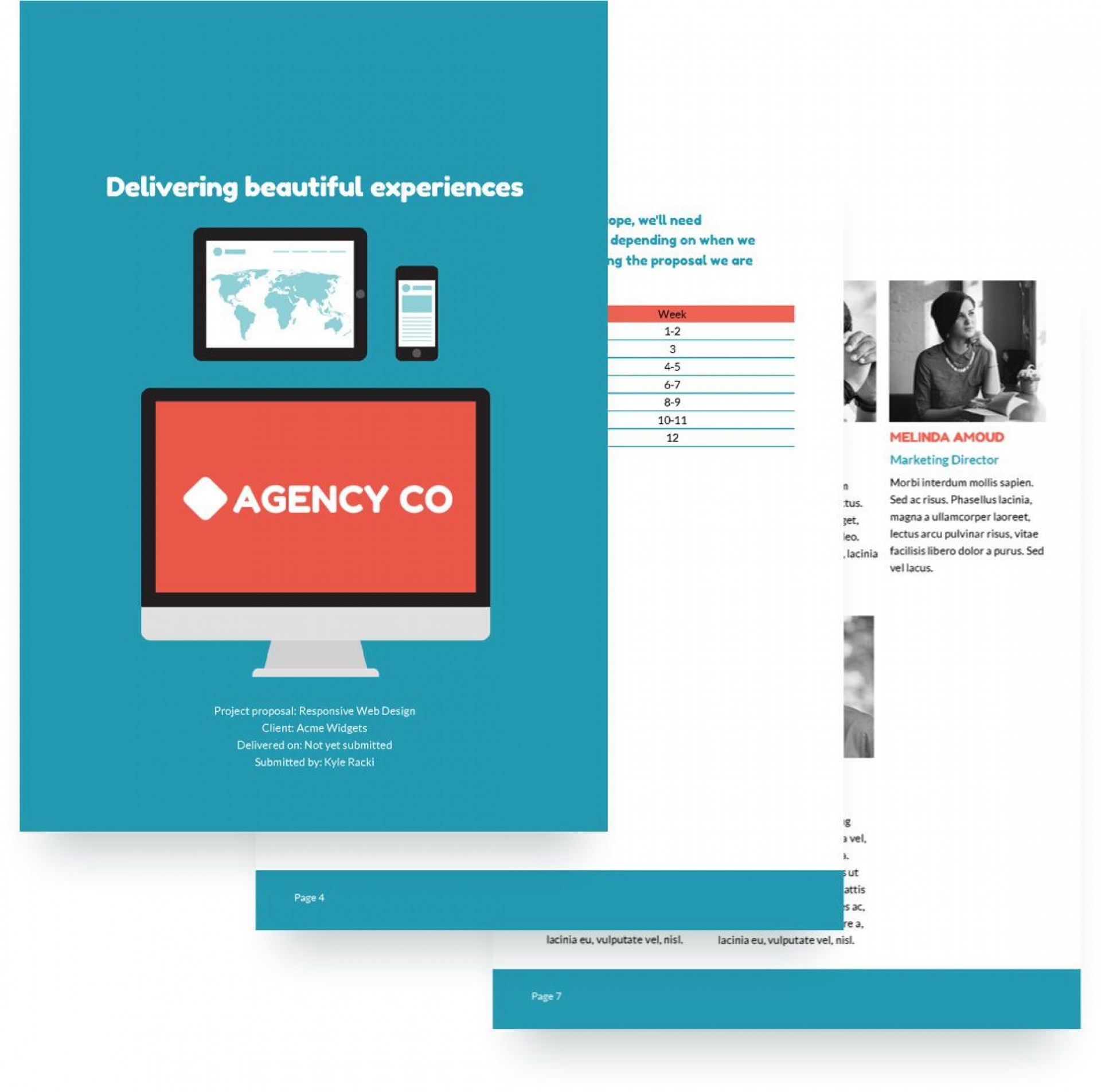 008 Unique Website Development Proposal Template Example  Web Free Document Portal1920