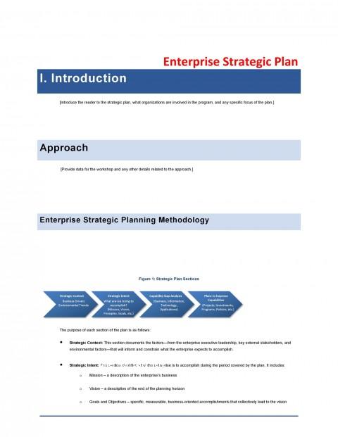 008 Wonderful Strategic Busines Plan Template Picture  Development Word Sample480
