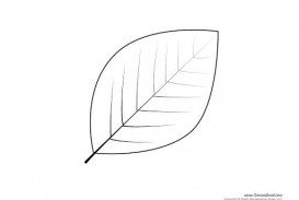 009 Amazing Leaf Template With Line Idea  Fall Printable Blank