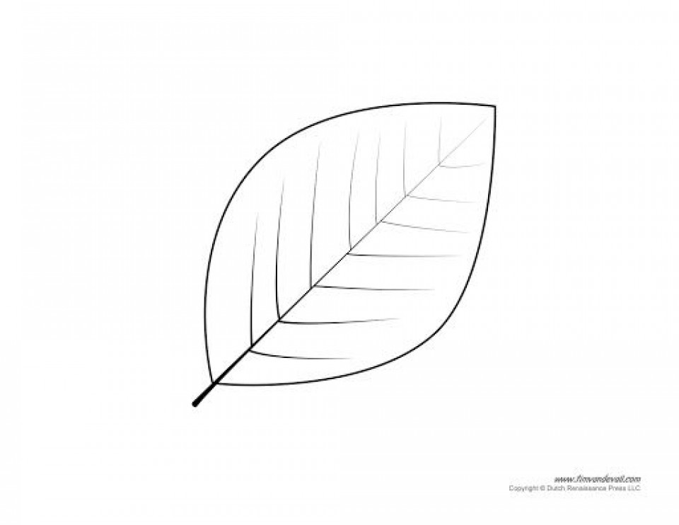 009 Amazing Leaf Template With Line Idea  Fall Printable Blank960