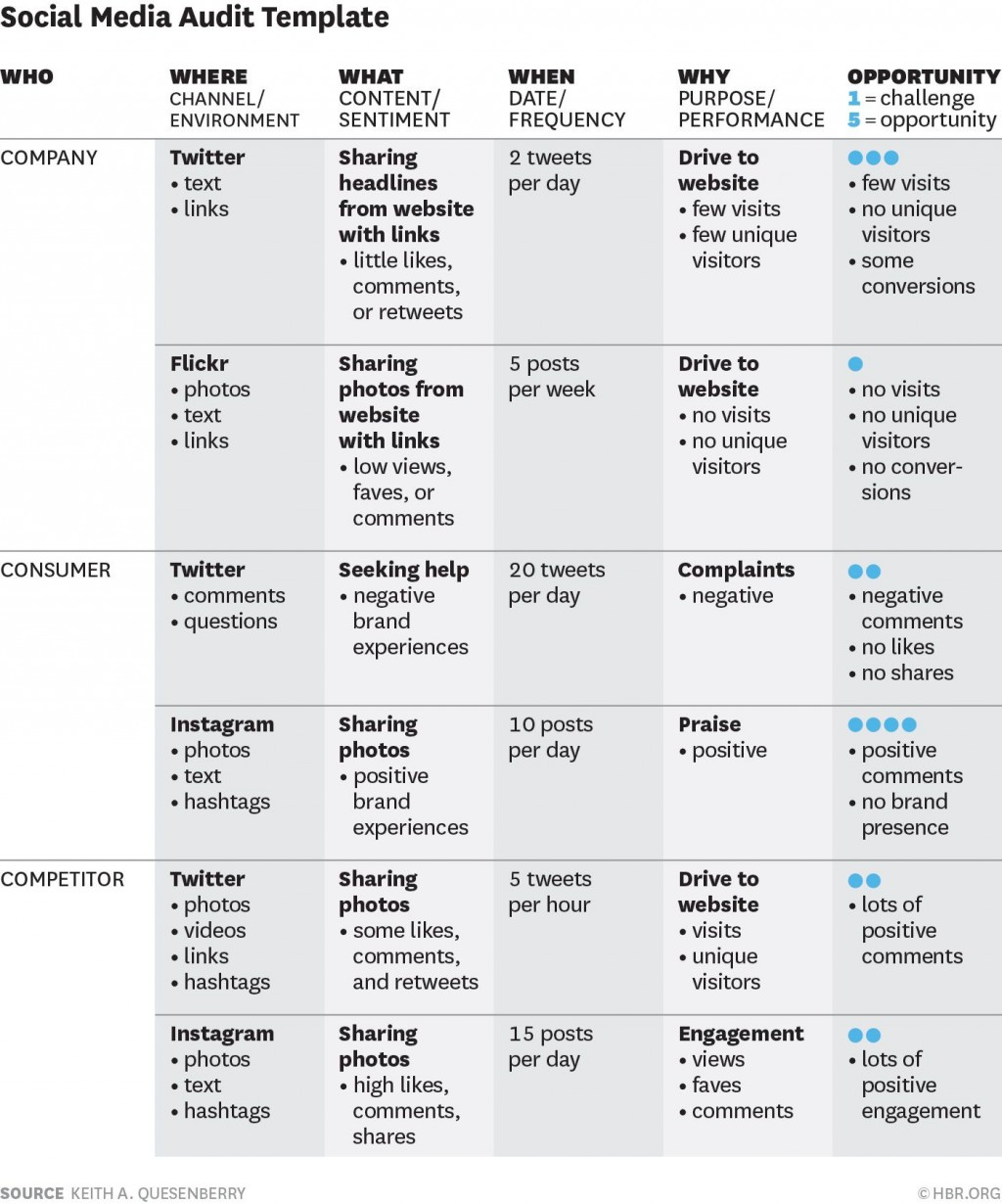 009 Amazing Social Media Strategy Template Pdf Concept  Sample ContentLarge
