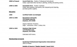 009 Archaicawful Free High School Graduate Resume Template Def  Templates