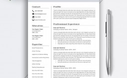 009 Awesome Best Resume Template Word High Resolution  Format Free Download Wordpres