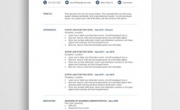 009 Awesome Resume Template M Word Free High Def  Cv Microsoft 2007 Download Infographic