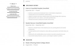 009 Awful Free Student Resume Template High Definition  Templates Microsoft Word Australia School