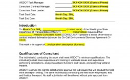 009 Awful Statement Of Work Example Project Management High Definition