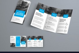 009 Best 3 Fold Brochure Template Sample  For Free