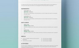 009 Breathtaking Professional Resume Template Free Download Word Concept  Creative