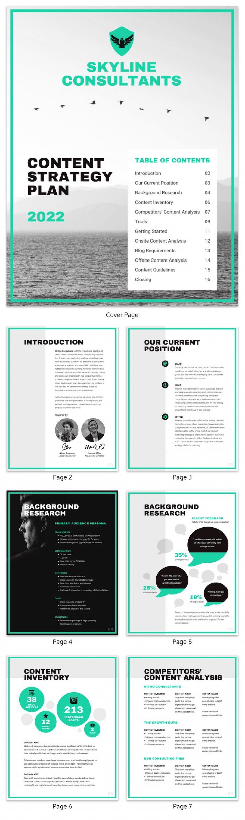 009 Dreaded Marketing Campaign Plan Template Free Design Large